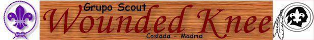 logo-RODILLA-HERIDA